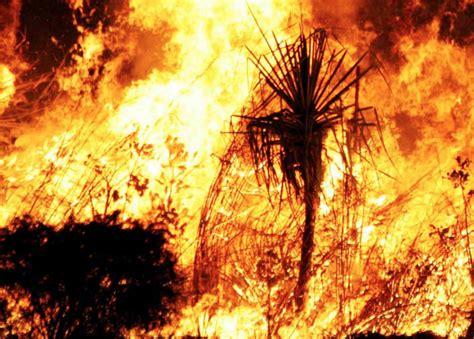earlier  frequent  dangerous bushfires  nsw