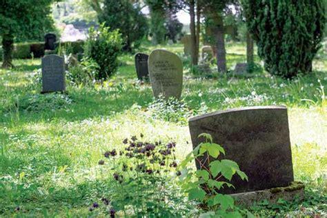 Burial Backyard by How To Plan An Eco Backyard Burial Earth News