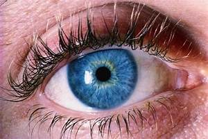 Your Pupils Reveal More Than You Might Think: How Subtle ...