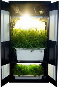 Indoor Grow Anleitung : weed closet grow box i really like this system it is an awesome piece of furniture to have in ~ Eleganceandgraceweddings.com Haus und Dekorationen