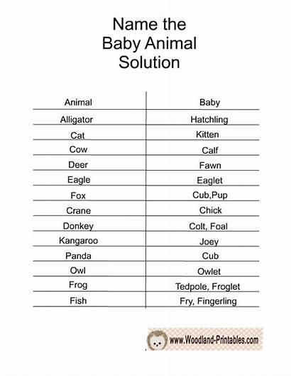 Woodland Printable Shower Animal Games Solution Names