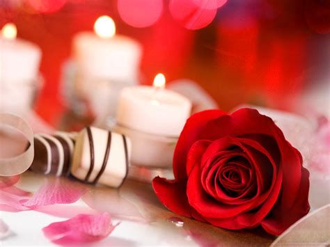 Enjoy and share your favorite beautiful hd wallpapers and background images. Download Love Flower Wallpaper Free Download Gallery