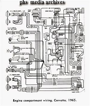 1972 Corvette Engine Wiring Diagram 25849 Netsonda Es
