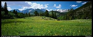 Panoramic Picture/Photo: Summer mountain landscape. Rocky ...