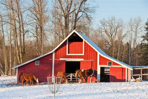 Barns And by Heated Barns And Horses Special Considerations Needed