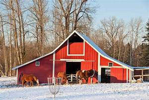 Heated Barns And Horses  Special Considerations Needed