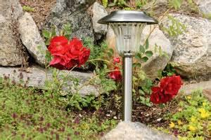 Hängepflanzen Für Balkonkästen : einen kleinen steingarten auf dem balkon anlegen tipps ~ Michelbontemps.com Haus und Dekorationen