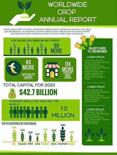 Infographic Template Report Annual Templates Holiday Simple