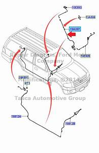New Oem Antenna Cable W    26 Splines 2009