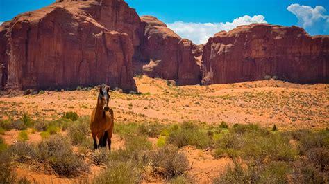 Hd Hintergrundbilder Valley Usa Arizona Pferde Denkmäler