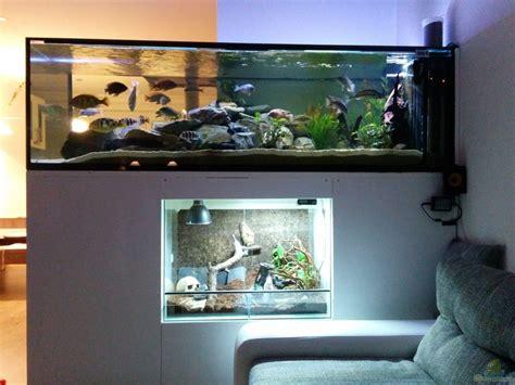 Aquarium Als Terrarium Nutzen by Aquarium Als Raumteiler Das Aquarium Als Raumteiler Mein