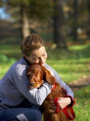 dog hug   wonderfulthingsabout