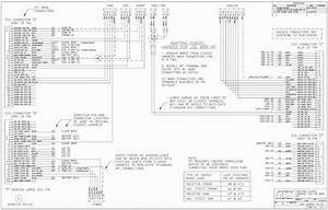 Ls1 Wiring Harness Pinout - Today Wiring Diagram