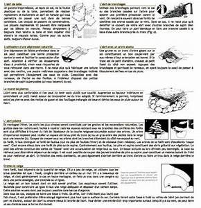 Comment Affuter Un Foret : trucs et conseils comment survivre en for t indian 39 s ~ Dailycaller-alerts.com Idées de Décoration