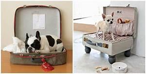 Panier Chat Pas Cher : panier niche chien ~ Teatrodelosmanantiales.com Idées de Décoration
