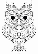 Owl sketch template
