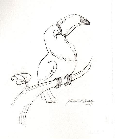 Toucan Sketch Pinkbunnie Deviantart