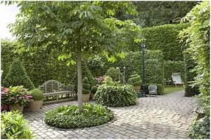 Baum Kleiner Garten : immergr ne b ume f r den garten hauptdesign ~ Orissabook.com Haus und Dekorationen