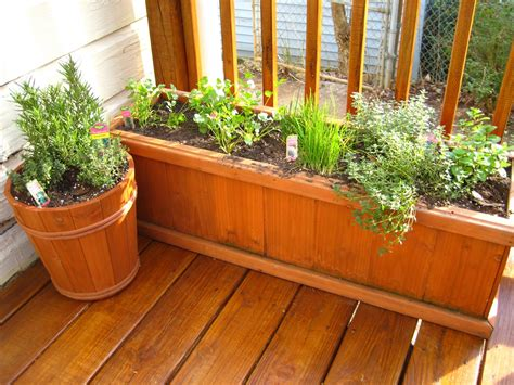 10 tips for growing your own herb garden outdoor living
