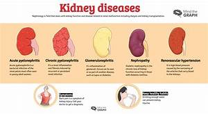 Blood Pressure Graph Urinary System Diseases Infographics To Understand Mind