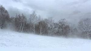 Winter Wind 1 Hour / Relaxing Snowstorm Sound, Winds ...