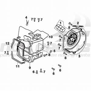 Honda Ruckus Motor Diagram