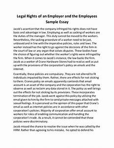 Essay On Children Rights Persuasive Essay Introduction Examples  Essay On Child Rights In English Translation Essays With Thesis Statements also Essay About Learning English  Essay For High School Application Examples