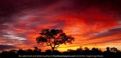 Africa South African Sunset Desktop Wallpapers Backgrounds