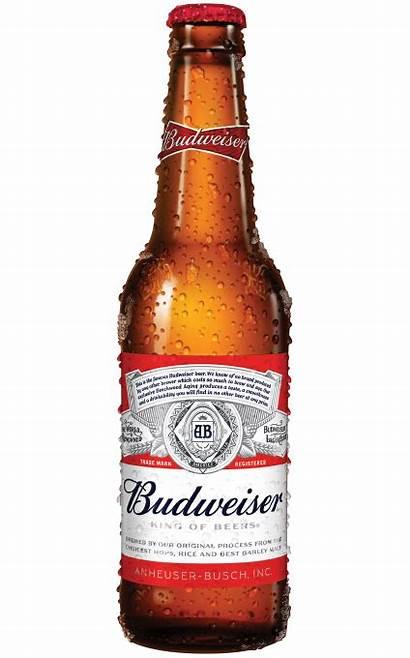 Budweiser Bottle Bud Bia Beers Lager Transparent