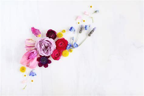 digital blooms march 2018 free desktop wallpapers