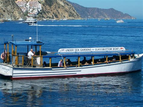 Glass Bottom Boat Tours Alabama by An Epic Adventure On The Glass Bottom Boat Voyage