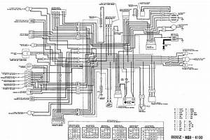 Here Is The Wiring Diagram  U2014 Moped Army