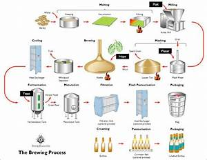 The Brewing Process Diagram