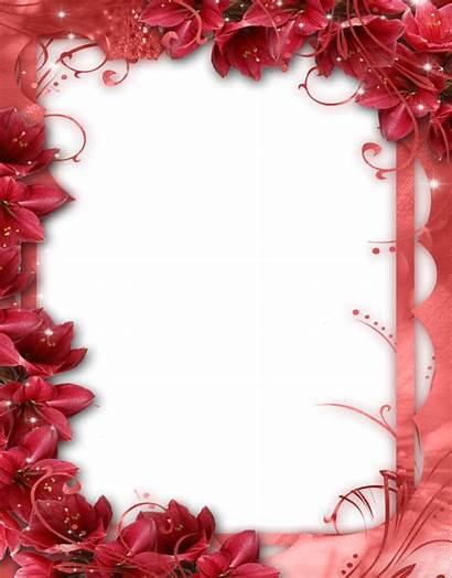 Frame Flower Romantic Collage Frames Fotos Gratis
