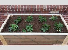 Elevated Planter Box Interesting Elevated Planter Box
