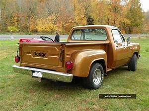 1979 Dodge Custom D150