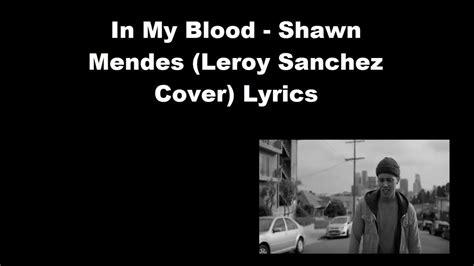 Shawn Mendes (leroy Sanchez Cover) Lyrics