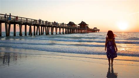 florida vacations package save    expedia