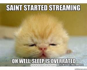 Sleepy cat memes | quickmeme