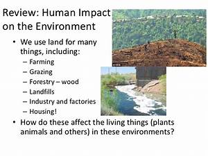 Human, Impacts, On, Plants, And, Animals