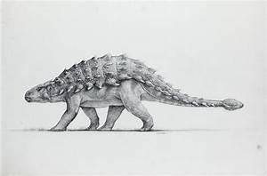 Jurassic Park 3 Ankylosaurus | Jurassic Park Concepts ...