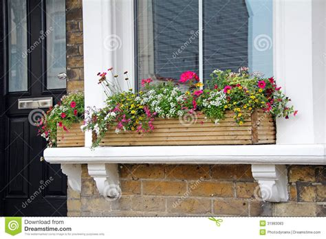 Indoor Windowsill Flowers by Window Sill Flower Box Stock Image Image Of Growing