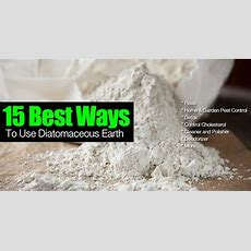 15 Best Ways To Use Diatomaceous Earth