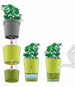 Kräutertopf Mit Bewässerungssystem : emsa kr utertopf 39 fresh herbs 39 wei baldur garten ~ A.2002-acura-tl-radio.info Haus und Dekorationen