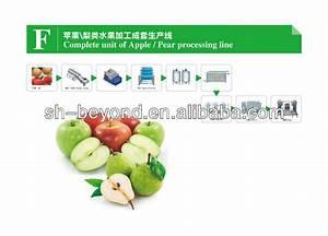 Automatic Wax Apple   Wax Apple Juice Processing Machine