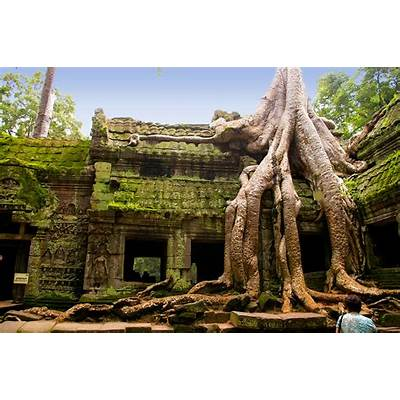 Thing to Do and See in Siem Reap Cambodia