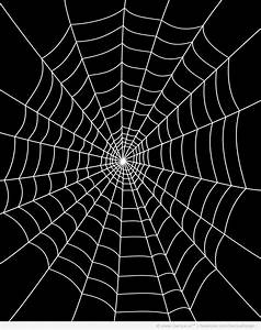 Vector Spider Web Design | www.imgkid.com - The Image Kid ...