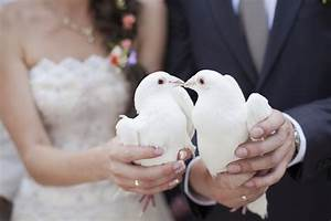Wedding doves - Articles - Easy Weddings
