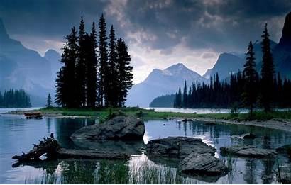 Rain Nature Forest Mountain River Sky Dog