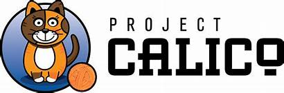 Calico Project Kubernetes Started Getting
